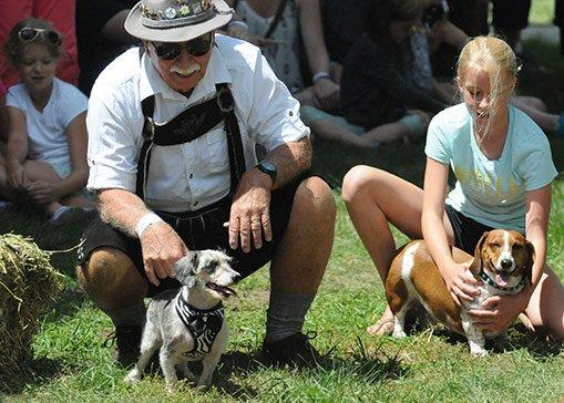 Dog Race Bavarian Blast